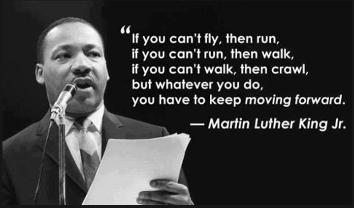 If-you-cant-fly-then-run-if-you-cant-run-then-walk-if-you-cant-walk-then-crawl-but-whatever-you-do-you-have-to-keep-moving-forward